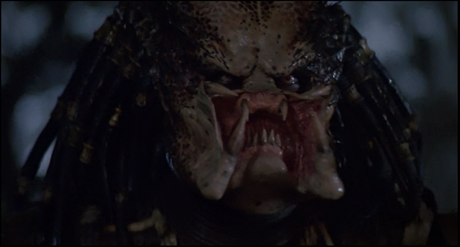 predator2b04