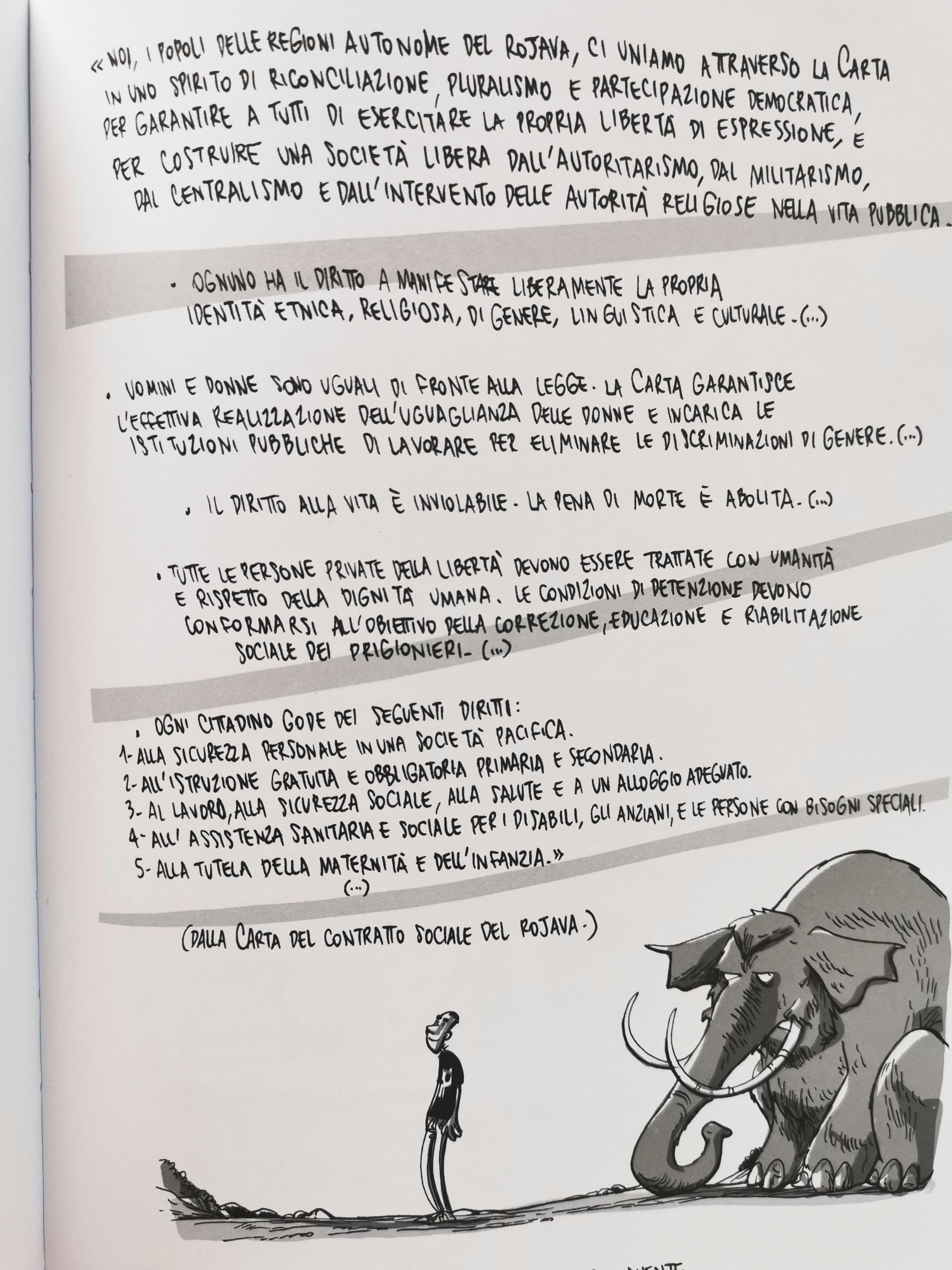 Kobane Calling: recensione del libro